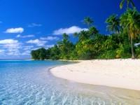 Una spiaggia dei caraibi