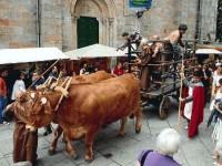 Galizia tra Ferias y Fiestas