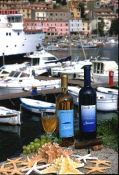 Ansonico Is-Giglio-Vino