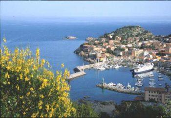 Ansonico toscana-Giglio-Porto-Nico-Tondini