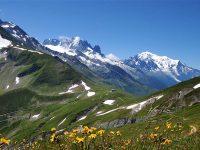 La Cipra, un organismo a tutela delle Alpi