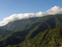Parco Nazionale Foreste Casentinesi Foto di Giordano Giacomini