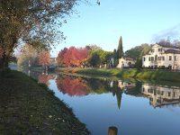 Perle d'acqua dolce sulla riviera del Brenta