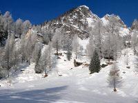 Neve non solo discesa