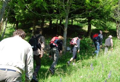 Cammino delle Dolomiti il gruppo in cammino (ph. P. Ricciardi © mondointasca.it)