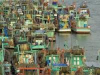 Vietnam. Il drago indocinese
