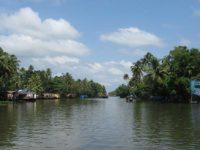 Un canale dei Backwaters Kerala-foto-di Lombardelli