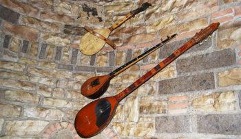 Lezha-il gusla-ha-solo-due-corde