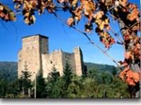 Casentino, valle di boschi e di arte