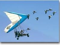 """Caproni,  un museo per """"volare"""""""
