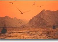 Lofoten, isole dell'abbondanza