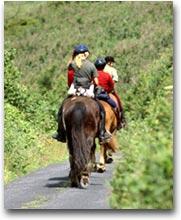 Kilkenny Passeggiata a cavallo (Ph: Nutan)