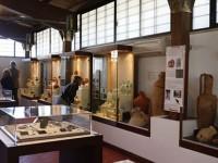Apre al pubblico il nuovo Antiquarium Lucrezia Romana