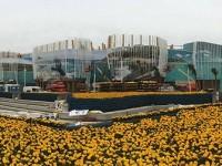 EXPO: vetrina per la gestione forestale sostenibile