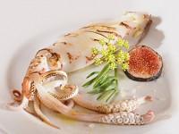 I calamari dell'Adriatico