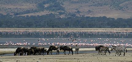 Tanzania, gioiello d'Africa