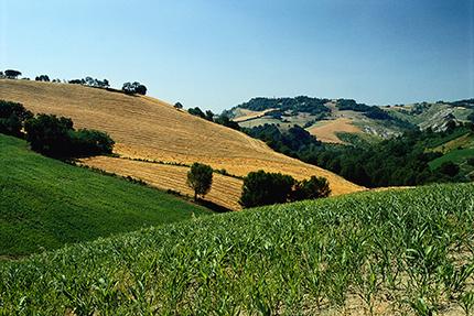 Emilia Romagna: il buon vivere diventa vacanza