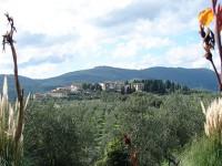 Artimino-Carmignano: paesaggio, storia e vino
