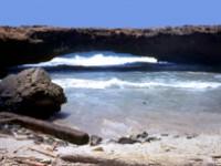 "Aruba: dove i visitatori diventano ""ambasciatori"""