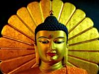 In India seguendo Buddha