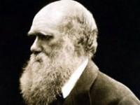 Darwin a Londra