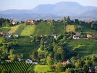 Austria: l'acqua (e i vini) della Stiria