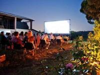 CinemaDiVino: quando il cinema incontra l'enogastronomia