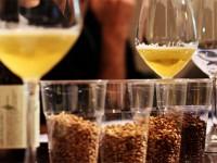 Diventare degustatore di birra