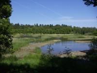 Stoccolma, capitale dell'ecologia