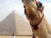 A zonzo tra Cairo e Piramidi