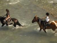 A scuola di equitazione in Carnia