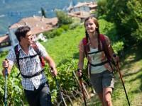 Alto Adige: Culturonda Wein App