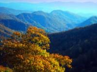 Smokies, natura e cultura della Carolina del Nord