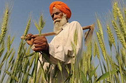 India rurale. Una vera scoperta