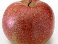 L'agriturismo si vince con le mele