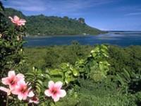 Miniguida dei 192 Paesi membri dell'ONU: Micronesia-Suriname