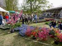 Orti e fiori in fiera a Carmagnola