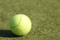 Tacchini resta agli Internazionali di tennis