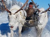 Viaggio 'all inclusive'. Destinazione: Siberia