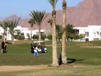 Il golf tra i canyon del Sinai