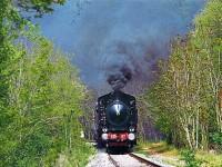 L'autunno comincia in treno