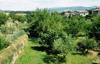 Gli italiani amano le vacanze verdi