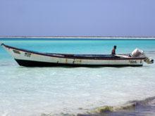 Nei caldi mari del Caribe venezuelano