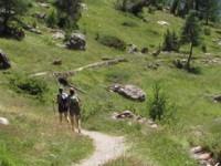 """Gli itinerari della """"viandanza"""" a piedi o in bici"""