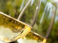 La Guida Oro I Vini Veronelli 2015