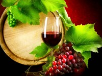 Il vino italiano è leader negli Stati Uniti