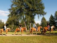 Altipiano del Salto: il paradiso dell'equitazione