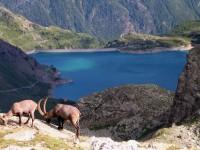 Val d'Aosta, benessere ad alta quota