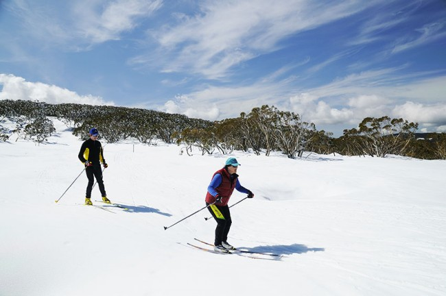 Sciare in Australia? Nel Victoria si può!