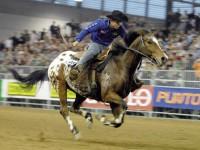 Fiera Cavalli torna a Verona